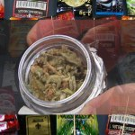 Synthetic Marijuana: A Brief Look