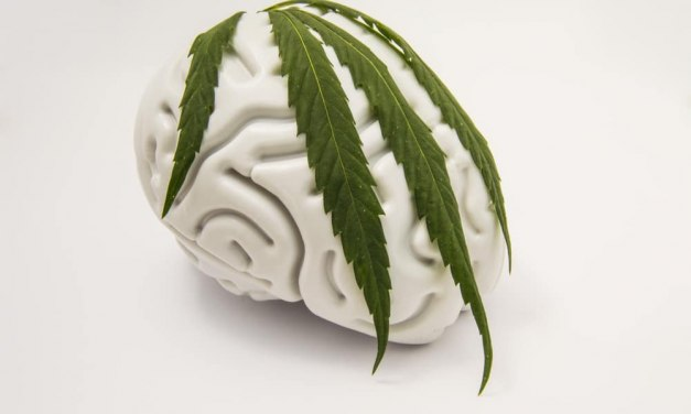 Cannabis and Mental Health