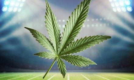 Pot and the NFL Draft